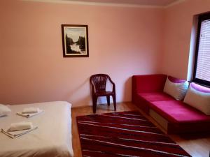 Apartment Iva - фото 11