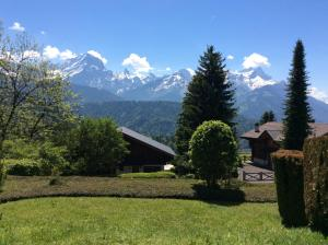 obrázek - Alpine Swiss Chalet & breathtaking view