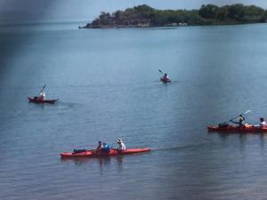B&B Skadar Lake Murici, Отели типа «постель и завтрак»  Бар - big - 16