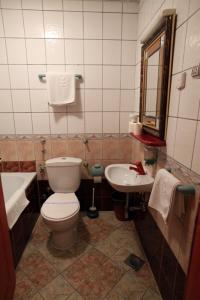 Hotel Dunav, Отели  Сремски-Карловци - big - 31