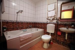 Hotel Dunav, Отели  Сремски-Карловци - big - 6