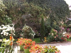 La Chuchotiere, Bed and breakfasts  Sainte-Maure-de-Touraine - big - 11