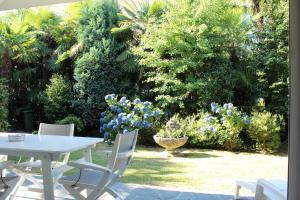 Casa Liliane, Apartments  Ascona - big - 1