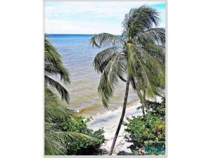CASA PLAYA SANTA MARTA 09, Holiday homes  Santa Marta - big - 14