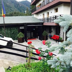 Royal Boutique Hotel Poiana Brasov, Hotels  Poiana Brasov - big - 48