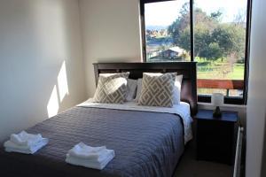 El Nido Villarrica Apartment, Appartamenti  Villarrica - big - 21