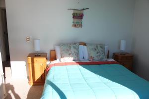 El Nido Villarrica Apartment, Appartamenti  Villarrica - big - 26