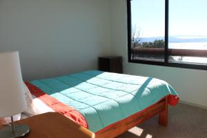 El Nido Villarrica Apartment, Appartamenti  Villarrica - big - 27