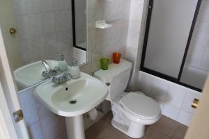 El Nido Villarrica Apartment, Appartamenti  Villarrica - big - 28