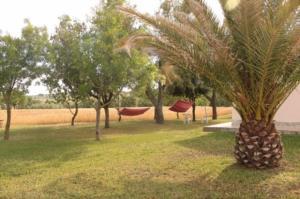 Agriturismo da Remo, Farmy  Magliano in Toscana - big - 15