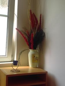 Apartment Biba - фото 10