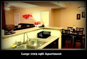 (107) 1st Flr.APT.Near NRG & Med Ctr - Apartment - Houston