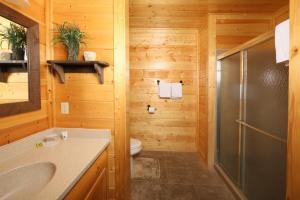 Howling Wolf - One Bedroom, Dovolenkové domy  Sevierville - big - 16