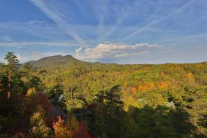 Better View - Four Bedroom, Case vacanze  Sevierville - big - 11