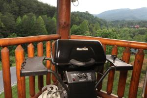 Moose-Behaving - Two Bedroom, Case vacanze  Sevierville - big - 9