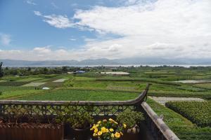 Dali Bai Cao Garden Theme Inn, Alloggi in famiglia  Dali - big - 63