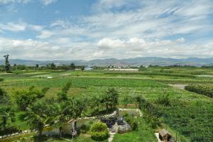 Dali Bai Cao Garden Theme Inn, Alloggi in famiglia  Dali - big - 66