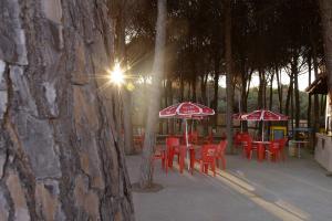 Villaggio Camping Pineta Mare