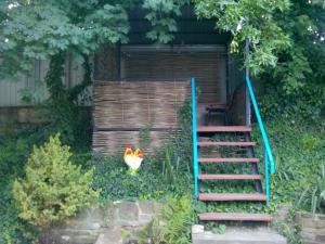 Черноморская лоза, Гостевые дома  Джубга - big - 22