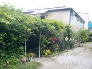 Черноморская лоза, Гостевые дома  Джубга - big - 19