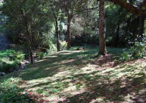 Allenvale, Chaty v prírode  Lorne - big - 8
