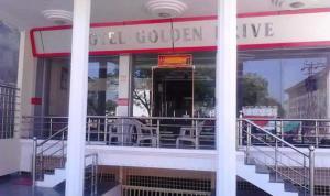 Hotel Golden Drive, Szállodák  Lalitpur - big - 1