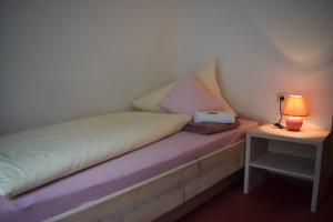 Landhaus Alpenrose - Feriendomizile Pichler, Penziony  Heiligenblut - big - 9