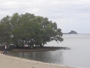 W Beach, Nyaralók  Lian - big - 22
