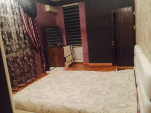 HSK Apartments Baku Mall, Apartmány  Baku - big - 2