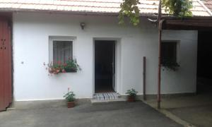 Cabana Maduta