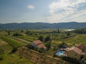 Villa Laura, Vily  Donji Proložac - big - 21