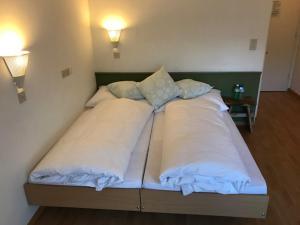 obrázek - Chamanna Bed & Breakfast