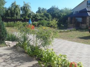 Guesthouse Zolotaya Rybka na Solnechom, Pensionen  Dzhubga - big - 1