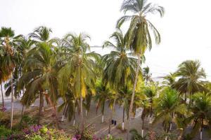 Casa Kokobuyo, Ferienwohnungen  Santa Marta - big - 31