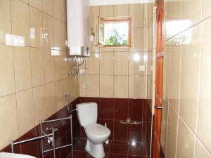 Liliom Apartman, Appartamenti  Gyula - big - 14