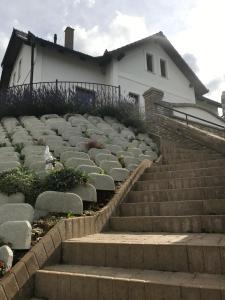Vass-Villa Vendégház
