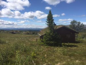 Farhovd Hyttegrend, Dovolenkové domy  Torvetjørn - big - 5