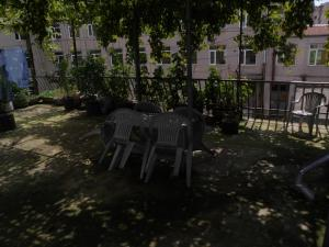 Guest House on Griboedov Street, Penzióny  Batumi - big - 11