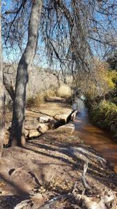 Oak Creek - The Ranch BnB