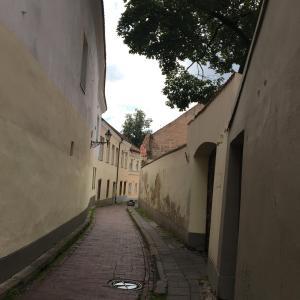 Skapas Street Vilnius, Apartments  Vilnius - big - 8