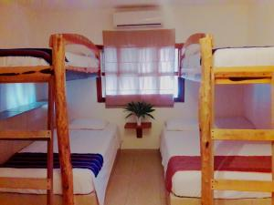 Hostel La Isla Holbox, Hostely  Holbox Island - big - 17