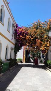 Las Artes, Apartmanok  Puerto de Mogán - big - 4