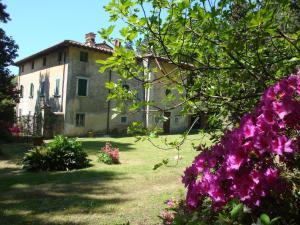 obrázek - Villa Masini-Luccetti