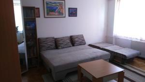 Apartment near Sarajevo center - фото 10