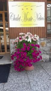 Prenota Chalet Monte Nebius