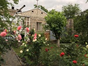 Guesthouse ''Ashot Shalunts'', Bed & Breakfasts  Goris - big - 37