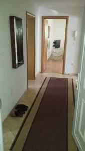 Apartman Ilidza, Сараево