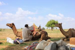 Hotel Royal Haveli, Hotels  Jaisalmer - big - 60