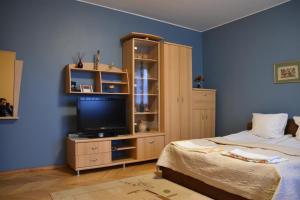 Cozy John's House, Privatzimmer  Vilnius - big - 14