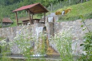 Mountain House - фото 8